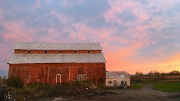 The 145-year-old Bradley-Craig barn in Stittsville is one of the last remaining farm structures in the Ottawa area built in the 19th century.