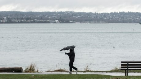 Metro Vancouver, Fraser Valley remain under wind warnings
