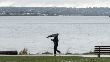 Raincouver Umbrella Vancouver Windy Rain BC Storm