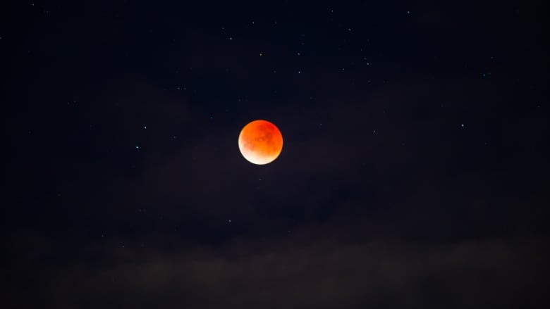 blood moon viewing vancouver - photo #13