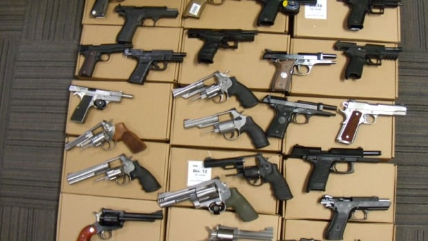 Toronto police seized 25 handguns from the home.