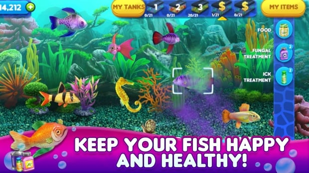 39 boom 39 in n s video game industry a boon to province for Fish tycoon 2
