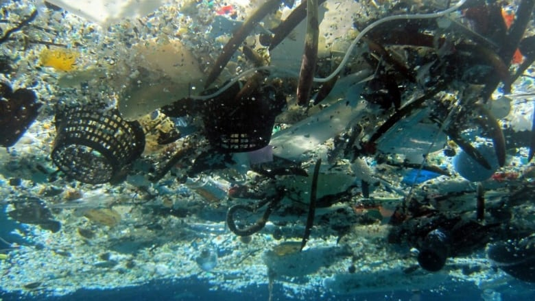 Canada's G7 anti-plastics push would fare better with federal policies, professor says
