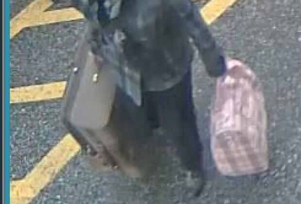 VIA Rail baggage stolen