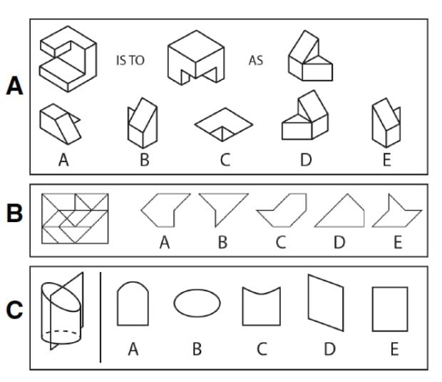 spatial cognition test