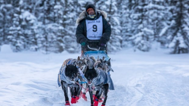 Musher Hugh Neff in the 2018 Yukon Quest. Neff withdrew from this year's race after one of his dogs died.