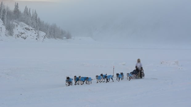 A musher passes near open water on the Yukon River during the Yukon Quest. This year, the Dawson City ice crossing did not freeze, which means the mushers' camp had to move from its usual location in West Dawson.