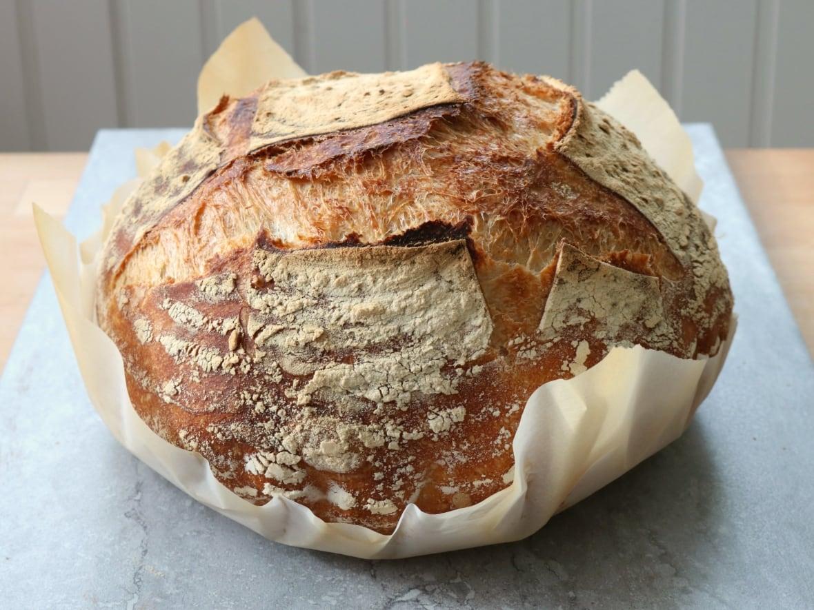 how to make sourdough bread using homemade yeast starter cbc news