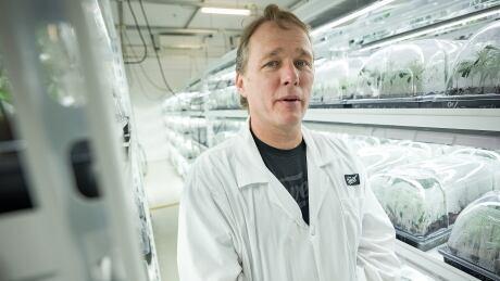 Bruce Linton Canopy Growth