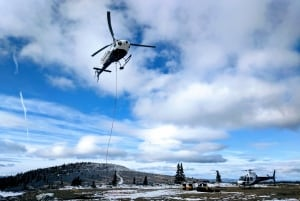 Goldcorp, Horizon Helicopters