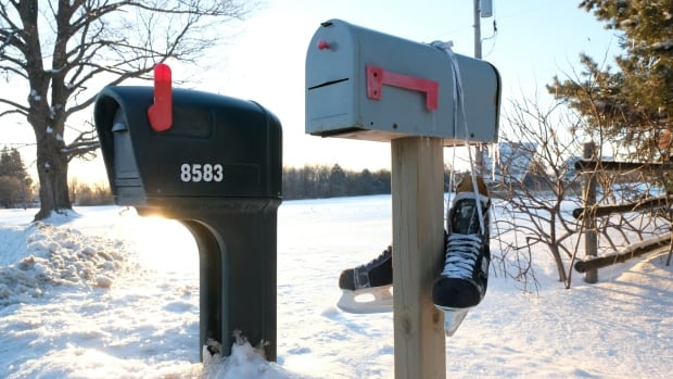 People in Mt. Brydges, Ont. are hanging ice skates from their mailboxes in memory of Avery Kernaghan. The 13-year-old avid synchronized skater was killed in a car crash on her way to a provincial skating competition.