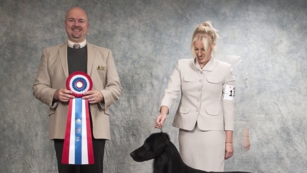 South Jersey Therapy Dog Competes in Westminster Dog Show