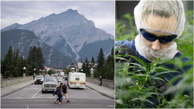 Banff's small retail footprint and popularity with tourists adds a few challenges when it comes to crafting the town's legal pot bylaws. Council is set to discuss specific rules later this month.