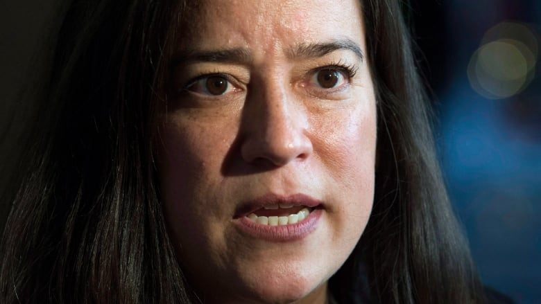 Minister of Justice Jody Wilson-Raybould tabled major criminal justice  reforms designed close gaps in the system and streamline the courts.