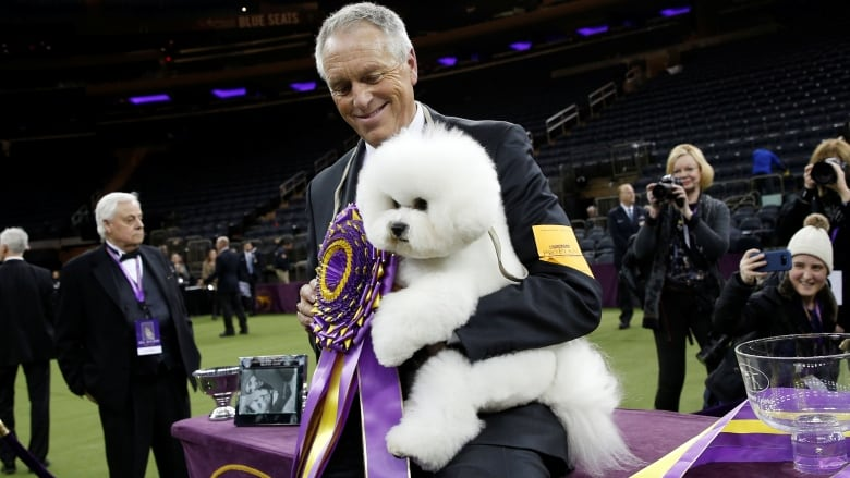 Tiny, fluffy and fierce: Meet Flynn, the Best in Show winner at