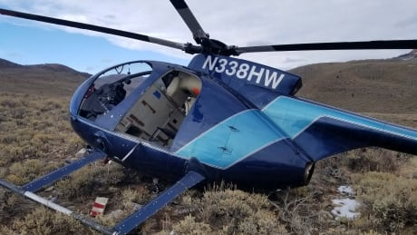 Elk Crashes Helicopter