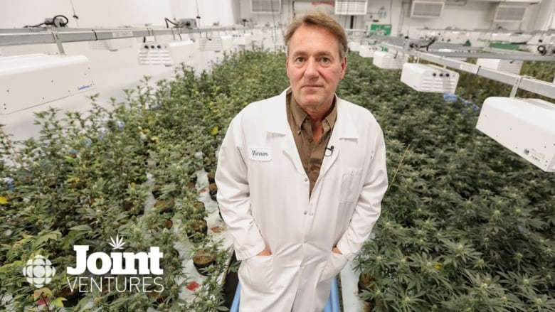 Joint Ventures: How cannabis growers are trying to stand out