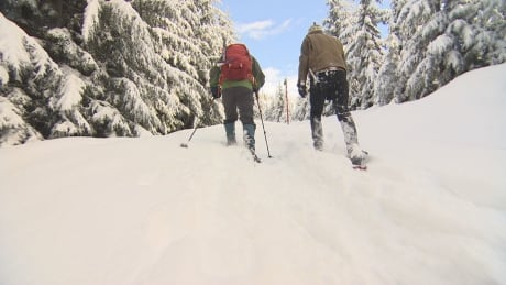 Rain and wind warnings make for 'gross' weather in Metro Van, but snow's headed for the slopes
