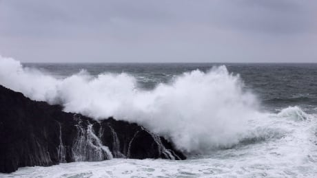 'It's a dangerous place if there's a big tsunami': coastal communities get new warning sirens