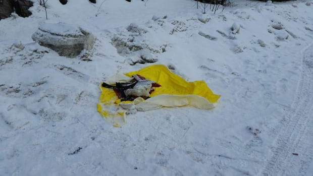 A bag containing debris from a vehicle that exploded in the Rock Forest borough of Sherbrooke on Saturday, Feb.17 2018.