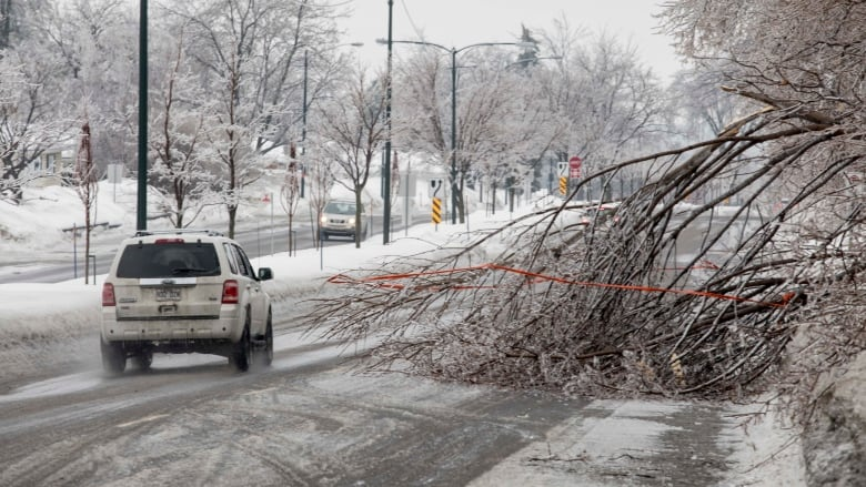 Schools closed due to freezing rain across southern Quebec