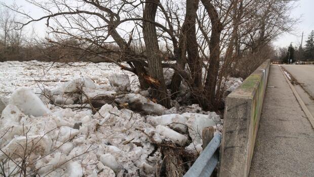Flood warnings: Heavy rains bring high water
