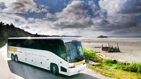 Tofino Bus Services to take over Greyhound routes on Vancouver Island