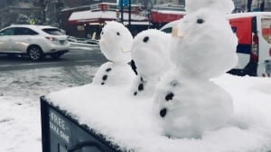 Vancouver deals with rare snowfall, and it's not over yet