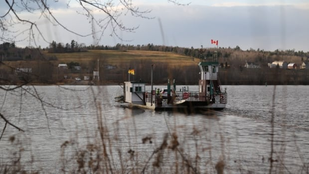 Ferries top the agenda on this week's Political Panel   CBC News