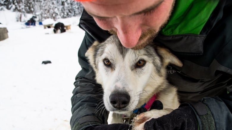 Nova Scotia man says 'misery I almost crave' pushing him to compete in Iditarod