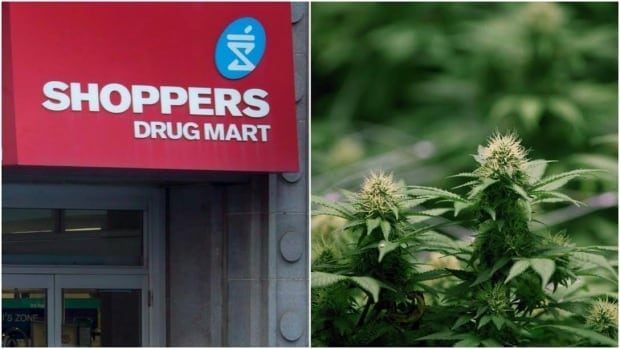 Shoppers Drug Mart gets medical pot licence from Health Canada   CBC