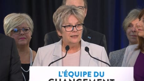 Montreal to hold byelection in December to fill 2 vacant seats
