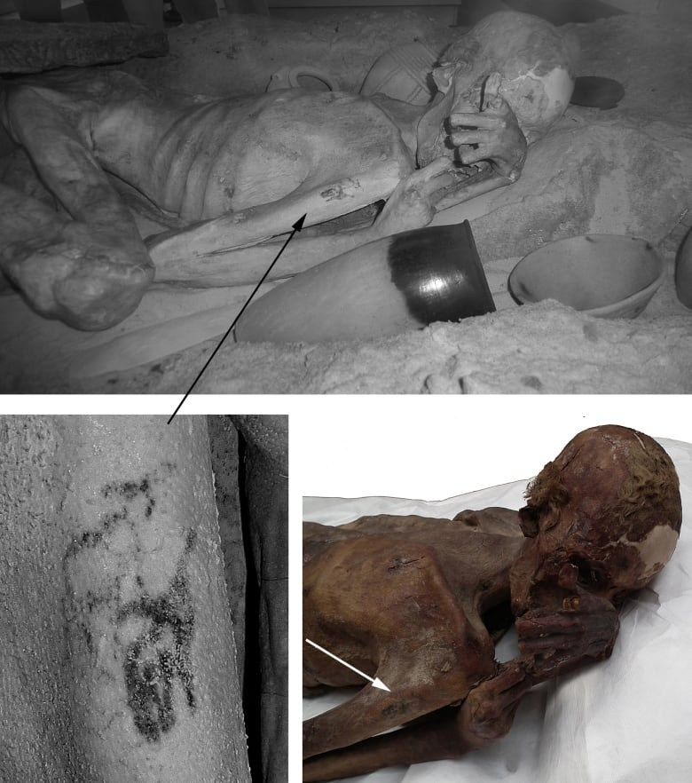 Tattoos Found On Ancient Egyptian Mummies Are Oldest Of Their Kind