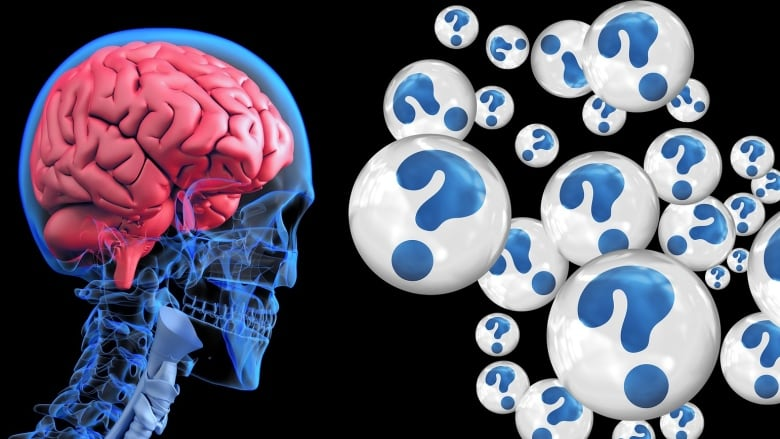 Scientists could look in your brain to determine your intelligence ...