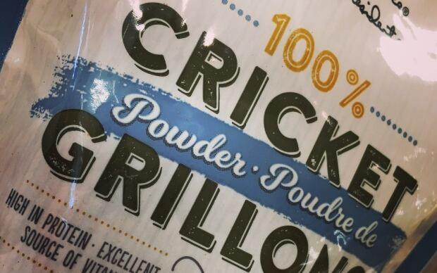 Cricket food