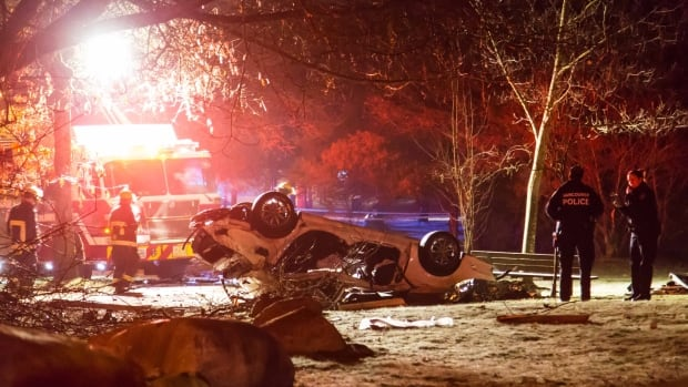 UBC resident dead after Mercedes crashes into tree