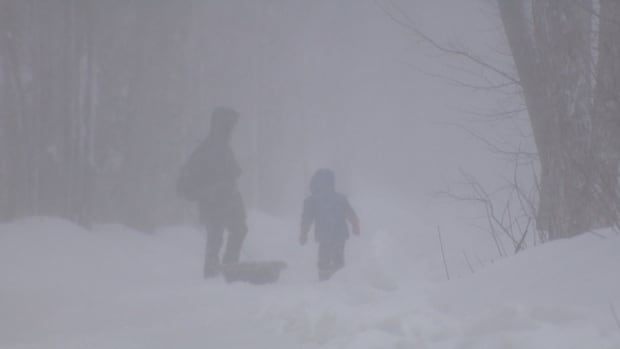 Another nor'easter is expected to blast the Maritimes early this week and could bring up to 40 cm of snow in some parts of the province.
