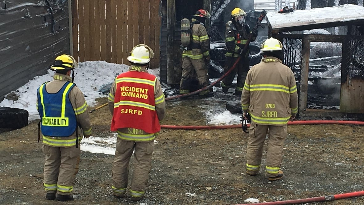 Dogs safe after fire destroys shed behind home in Goulds