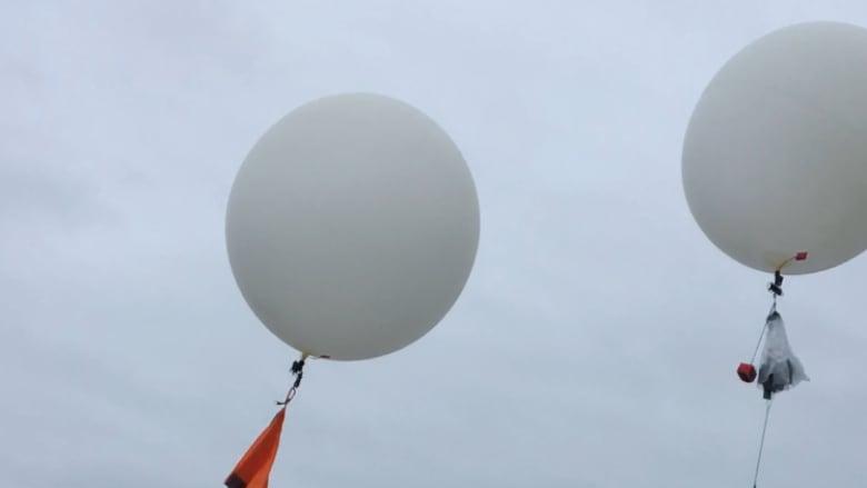 Balloons provide no joy for wildlife, environmentalists warn