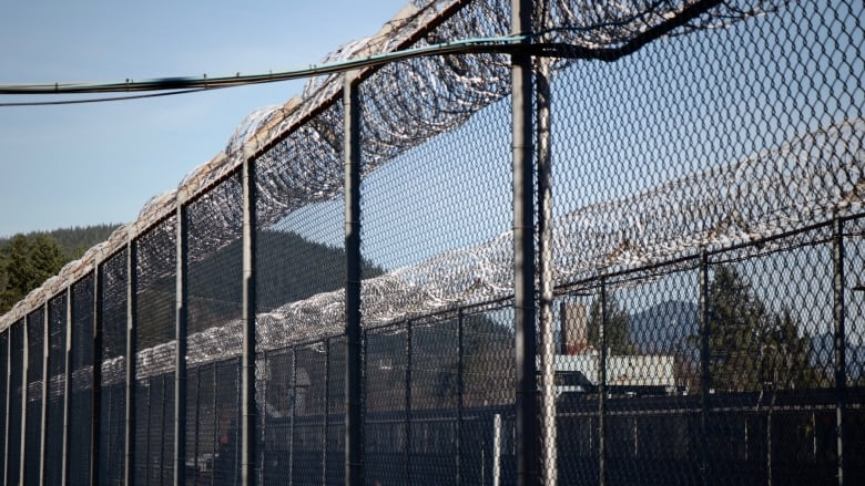 indigenous overrepresentation in the canadian criminal The canadian prison system continues to fail indigenous people, the number of   indigenous women are even more overrepresented in prison: in  individuals  who were found guilty of crimes by independent courts, and it's.