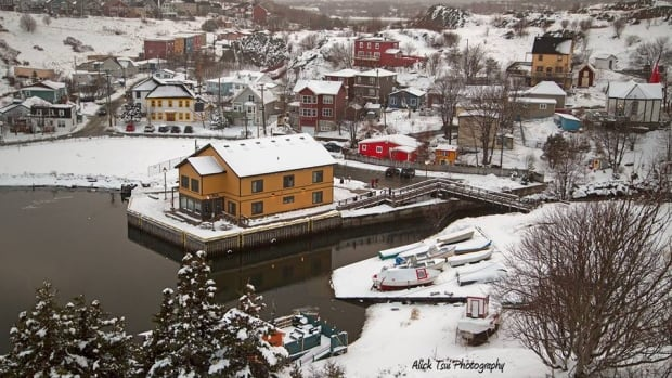 Such a pretty sight! Quidi Vidi, taken from the trail after the March 10 storm.