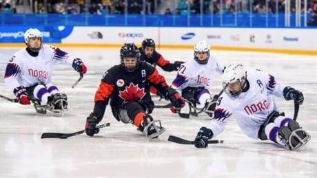 A closer look at Para Ice Hockey