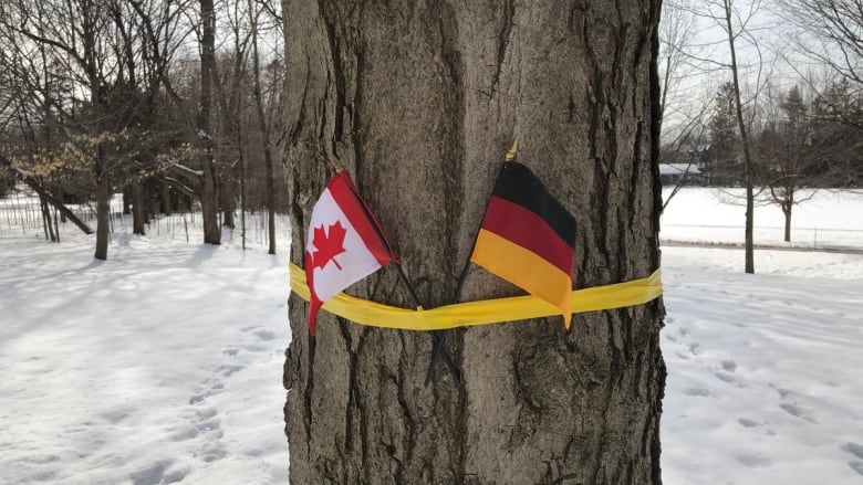 Rideau Hall welcomes Belgian royalty with a German flag