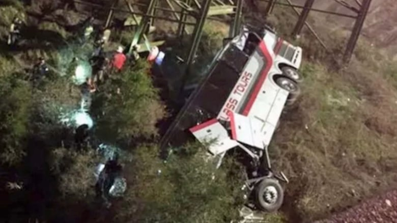 School bus plunges into Alabama ravine, killing driver and injuring several others