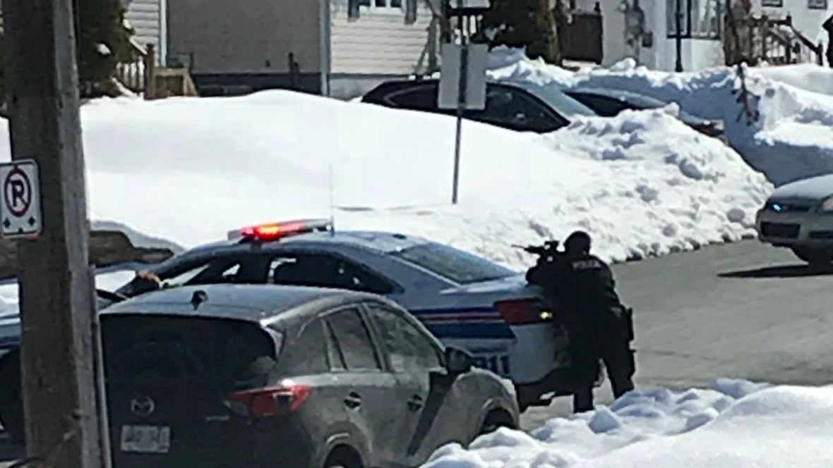 Police have weapons drawn outside Mount Pearl home