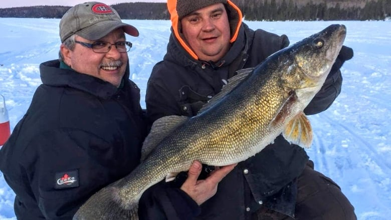Giant, record-class walleye caught and released near Dryden, Ont.