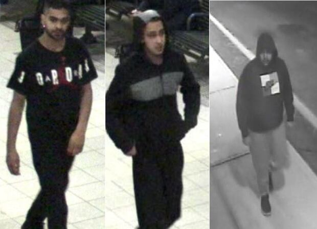 Police identify second suspect in Ontario attack on man with autism