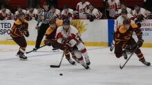 UNB hockey