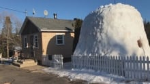 Igloo in front of New Ross bungalow