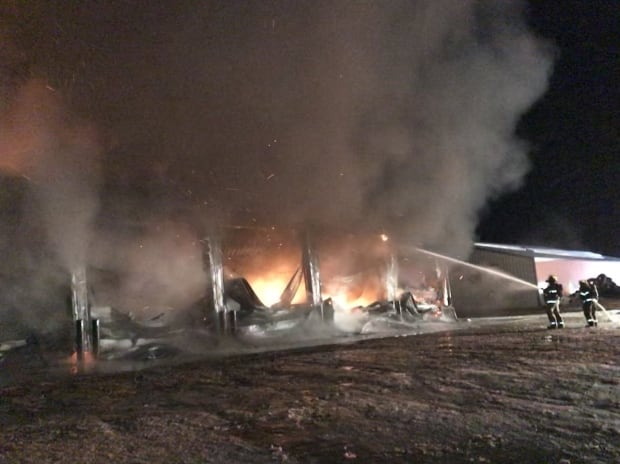 Firefighters at Osler diary farm fire
